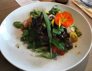 Laurus Vital - leckerer Salat