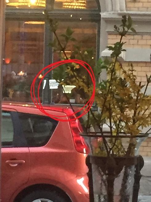 (c) Kulturspalte. Hohlspiegel. Blick aus dem Restaurant Osteria Da Salvatore in Halle.